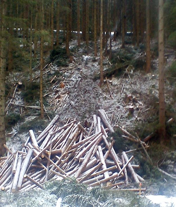 Log Line